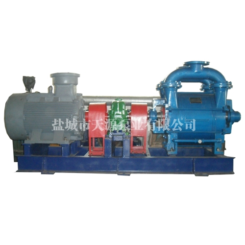 南京2BE252水环真空泵