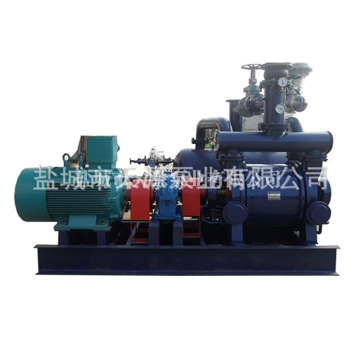 淮安2BE303水环真空泵