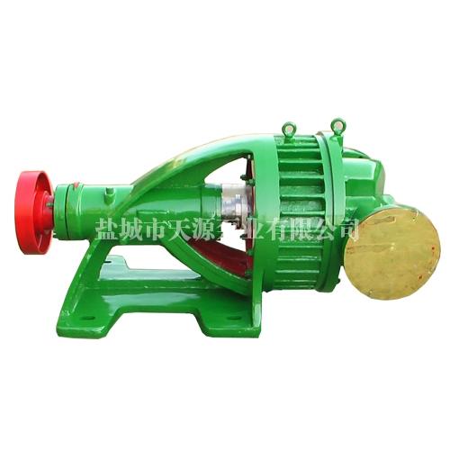 YLJ750/0.3氯气泵