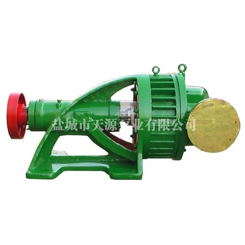 YLJ300/0.3氯气泵
